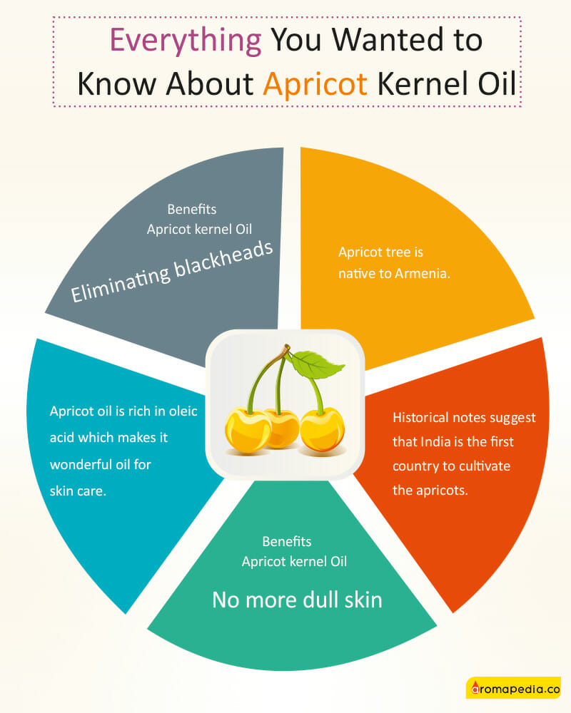 Everything-You-Wanted-to-Know-About-Apricot-Kernel-Oil