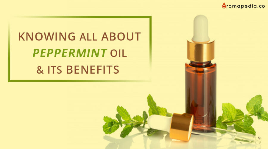 KNOWING-ALL-ABOUT-PEPPERMINT-OIL-&-ITS-BENEFITS